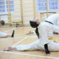 Free Fight Karate