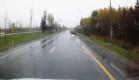 Перебегавший Мурманское шоссе лось едва не угодил под колеса авто